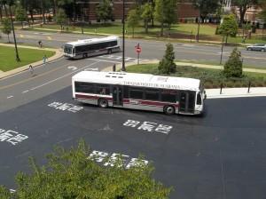 Buses 015