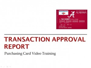 Transaction Approval Report Video